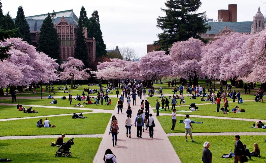 Mary Gates Research Scholarship at University of Washington, USA 2019